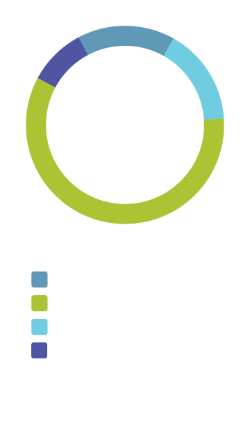 Pie chart depicting students by level
