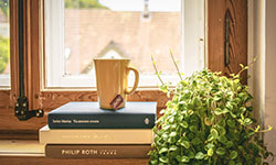 Coffee mug sitting on top of books, next to a sunny window
